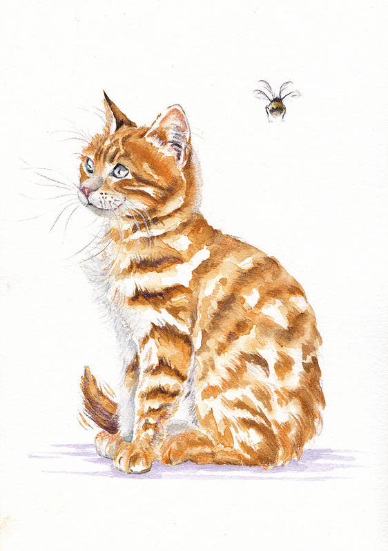 Tabby Cat - Bee Oblivious by Debra Hall