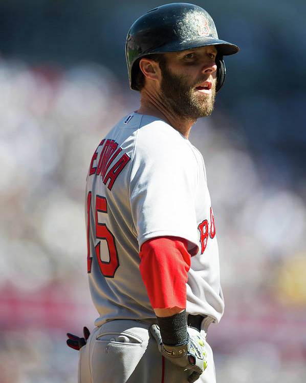 East Poster featuring the photograph Dustin Pedroia by Rob Tringali