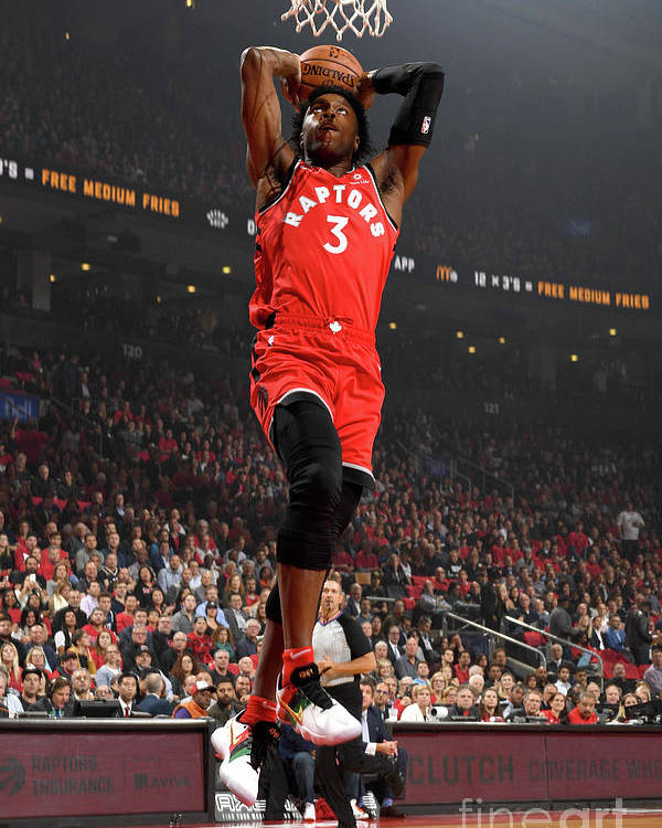 Nba Pro Basketball Poster featuring the photograph Og Anunoby by Ron Turenne