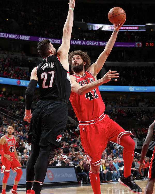Nba Pro Basketball Poster featuring the photograph Robin Lopez by Gary Dineen