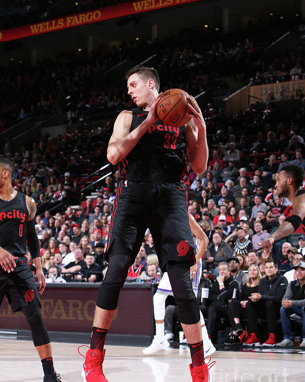 Nba Pro Basketball Poster featuring the photograph Zach Collins by Sam Forencich