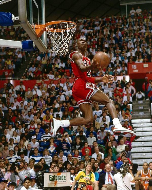 Chicago Bulls Poster featuring the photograph Michael Jordan by Andrew D. Bernstein