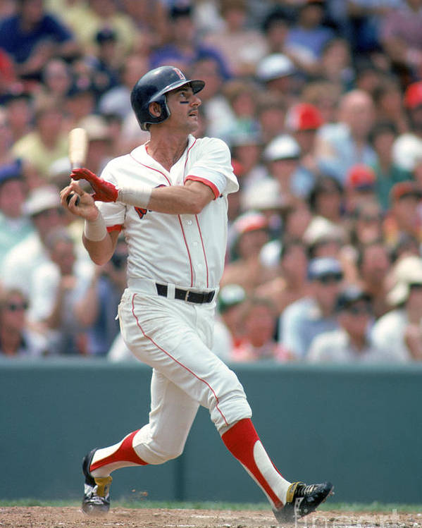 American League Baseball Poster featuring the photograph Carl Yastrzemski by Rich Pilling