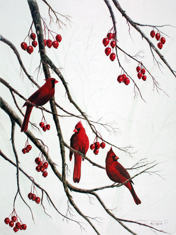 Birds; Cardinals; Trees Poster featuring the painting Cardinals And Crabapples by Ben Kiger