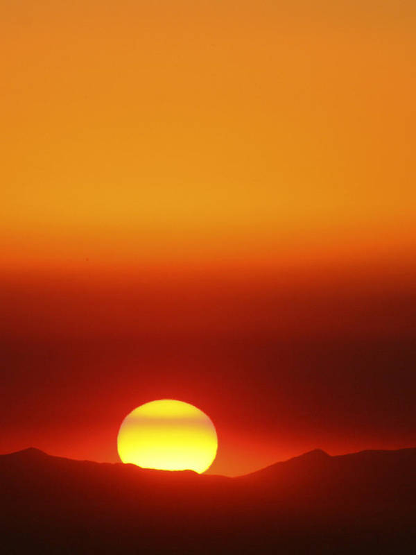Catalina Sunset Poster featuring the photograph Catalina Sun by Andre Aleksis