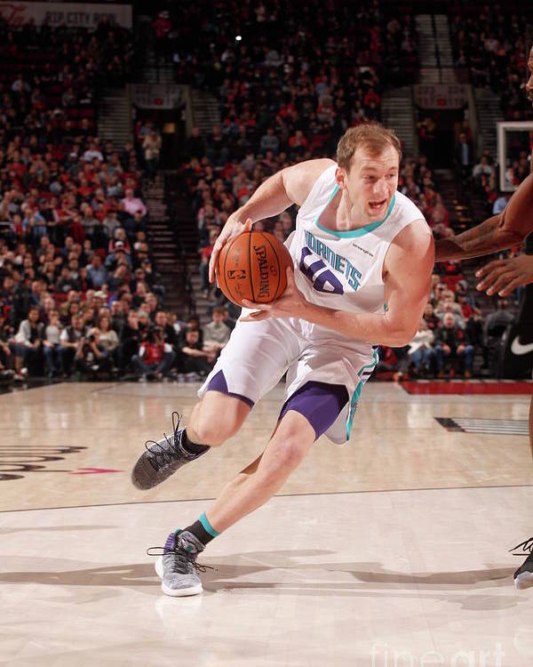 Nba Pro Basketball Poster featuring the photograph Cody Zeller by Cameron Browne