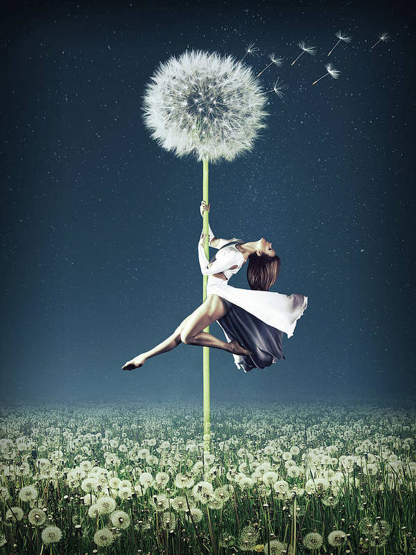 Surreal Poster featuring the digital art Dandelion Dancer by Mihaela Pater