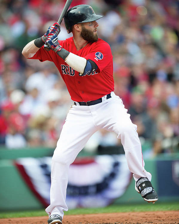 Playoffs Poster featuring the photograph Dustin Pedroia by Rob Tringali