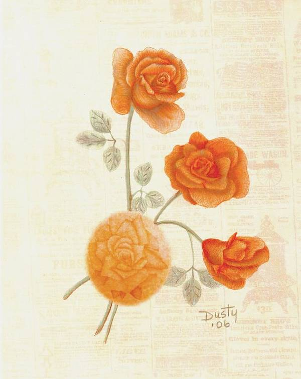 Rose Poster featuring the drawing Faded Memories by Dusty Reed