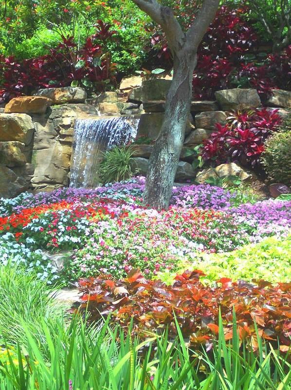 Garden Poster featuring the photograph Floral Garden by Pharris Art
