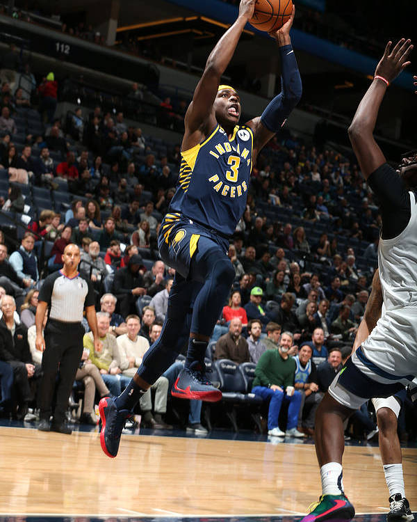 Nba Pro Basketball Poster featuring the photograph Indiana Pacers v Minnesota Timberwolves by David Sherman