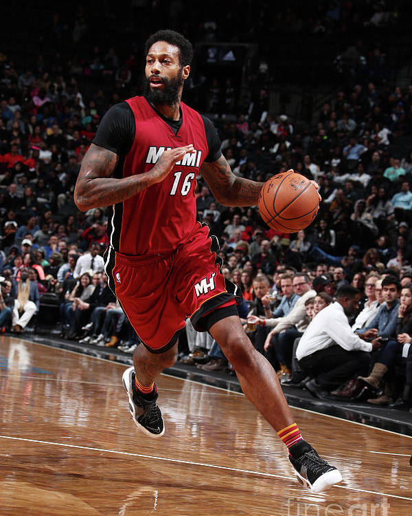 Nba Pro Basketball Poster featuring the photograph James Johnson by Nathaniel S. Butler