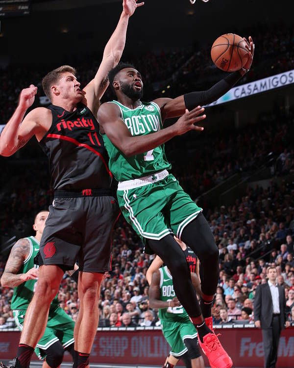 Nba Pro Basketball Poster featuring the photograph Jaylen Brown by Sam Forencich
