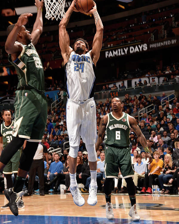 Nba Pro Basketball Poster featuring the photograph Khem Birch by Gary Bassing