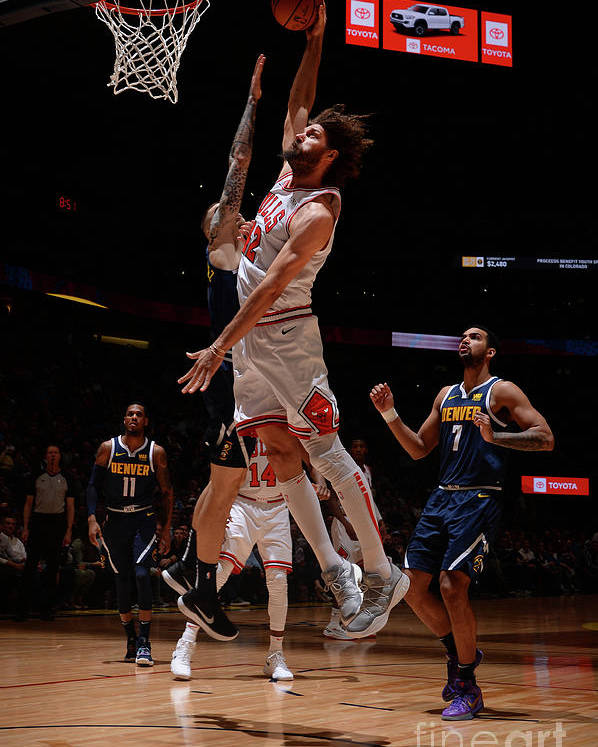 Nba Pro Basketball Poster featuring the photograph Robin Lopez by Bart Young