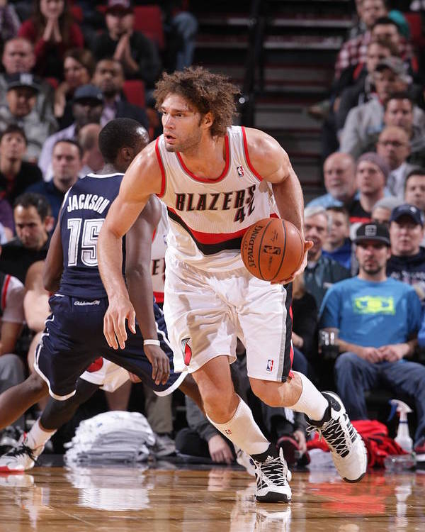 Nba Pro Basketball Poster featuring the photograph Robin Lopez by Sam Forencich