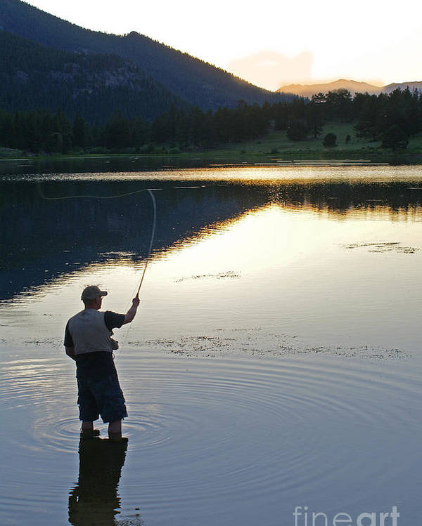 Fishing Poster featuring the photograph Sunrise Lily Lake by Heather Coen