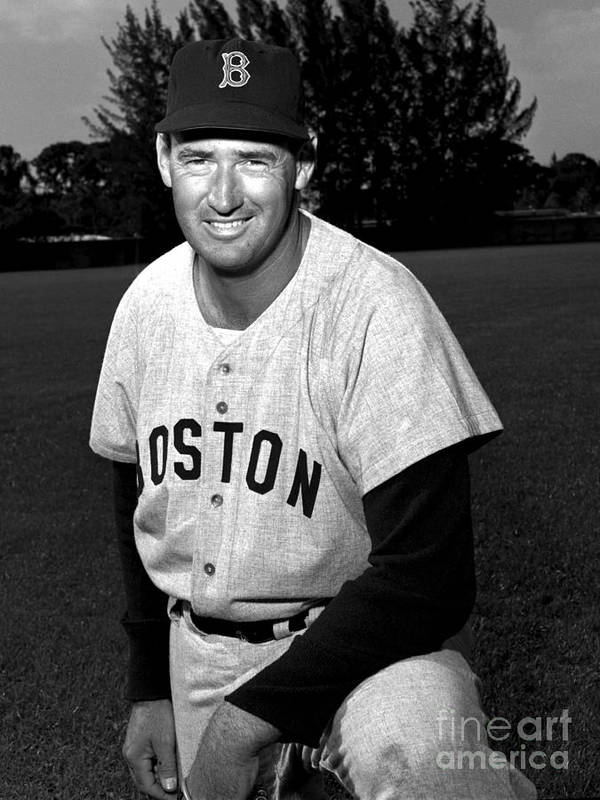 People Poster featuring the photograph Ted Williams by Olen Collection