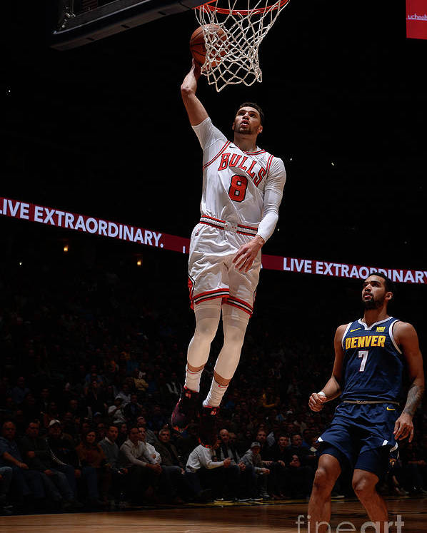 Chicago Bulls Poster featuring the photograph Zach Lavine by Bart Young