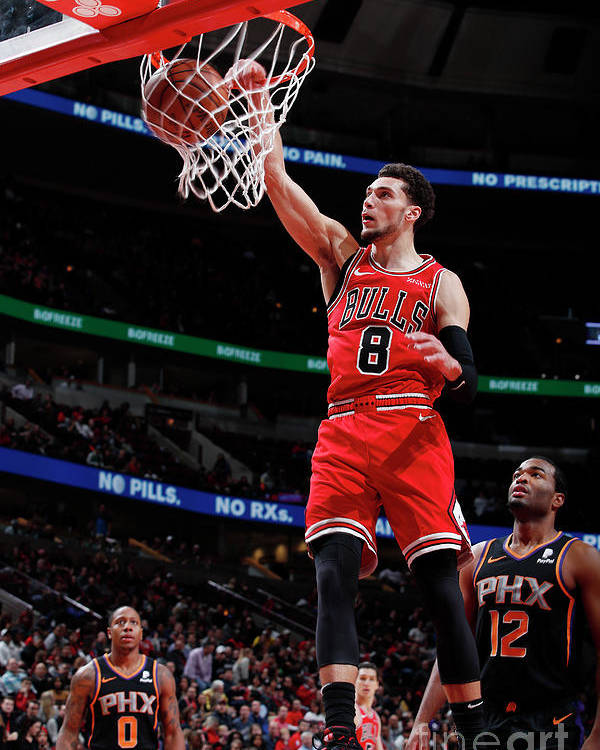 Chicago Bulls Poster featuring the photograph Zach Lavine by Jeff Haynes