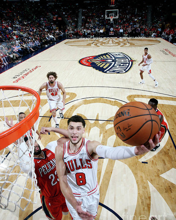 Chicago Bulls Poster featuring the photograph Zach Lavine by Layne Murdoch Jr.