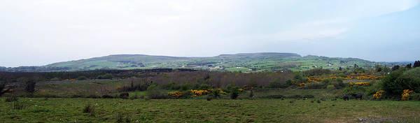 Ireland Poster featuring the photograph Horses at Lough Arrow County Sligo Ireland by Teresa Mucha
