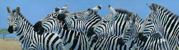 Zebra Poster featuring the painting Serengeti Serenade by Durwood Coffey