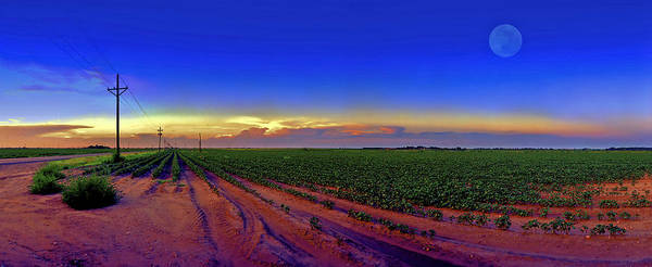 West Texas Poster featuring the photograph Serenity by Robert Hudnall