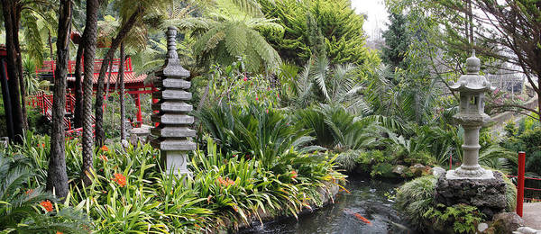Zen Garden Poster By Images Etc Ltd