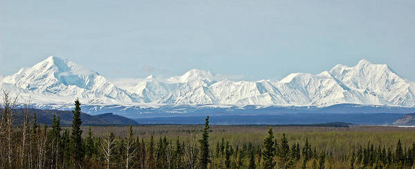 Alaska Poster featuring the photograph Mt Hayes Alaska May 2007 by Jim and Kim Shivers