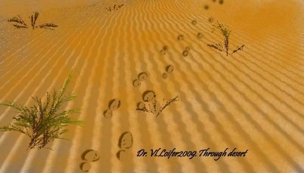 Landscape Poster featuring the digital art Through desert by Dr Loifer Vladimir