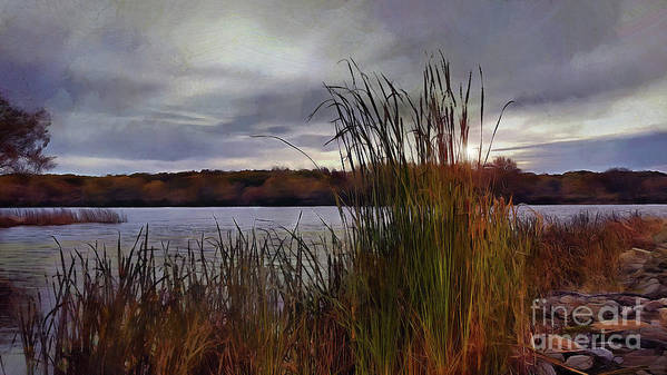 Landscape Poster featuring the photograph Tall Grass At Sunset by Cedric Hampton