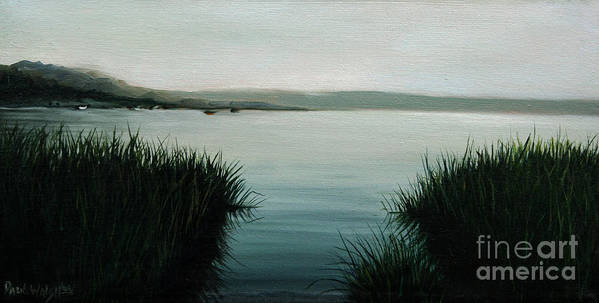 Ocean Grass Poster featuring the painting Ocean Grass by Paul Walsh