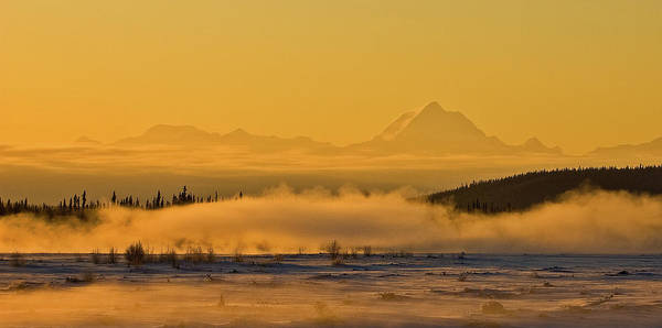Tanana River Poster featuring the photograph Morning Fog by Jim and Kim Shivers