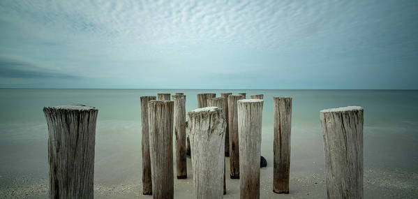 Naples Florida 2021 Poster featuring the photograph Naples Pilings 2021 by Joey Waves
