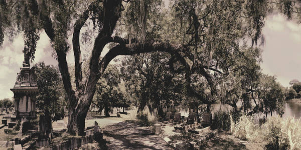 Castle Poster featuring the photograph Magnolia Cemetery by James Christopher Hill