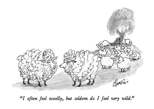 One Sheep To Another.  Animals Poster featuring the drawing I Often Feel Woolly by Edward Frascino