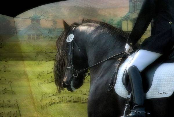 Friesian Horses Poster featuring the digital art Musical Freestyle by Fran J Scott
