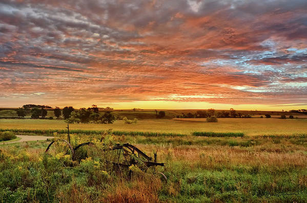 Pasture Poster featuring the photograph Pasture Sunrise by Bruce Morrison