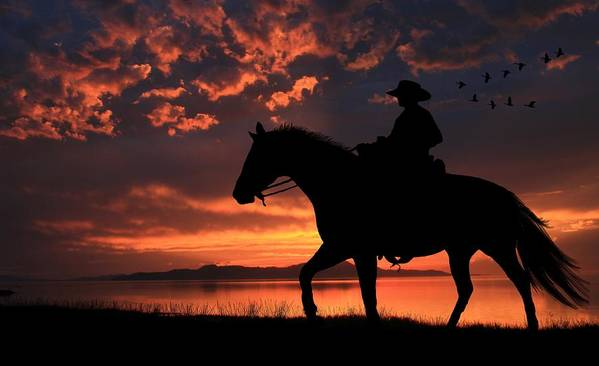 Cowboy Poster featuring the photograph Cowboy Sunset by Gene Praag