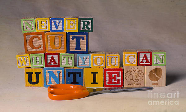 Never Cut What You Can Untie Poster featuring the photograph Never Cut What You Can Untie by Art Whitton