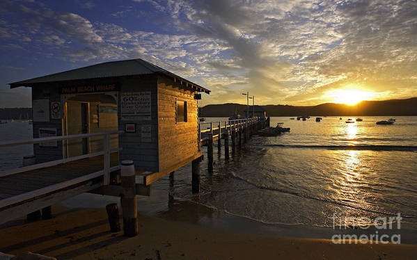 Palm Beach Sydney Australia Sunset Water Pittwater Poster featuring the photograph Palm Beach sunset by Sheila Smart Fine Art Photography