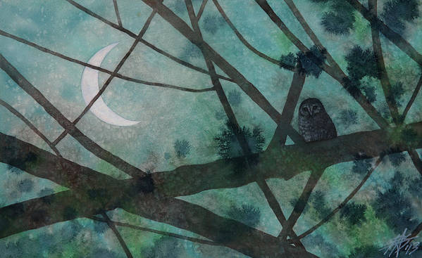 Strix Varia Poster featuring the painting Barred Owl Moon by Robin Street-Morris
