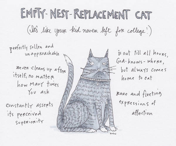 Captionless Poster featuring the drawing Empty Nest Replacement Cat by Teresa Burns Parkhurst