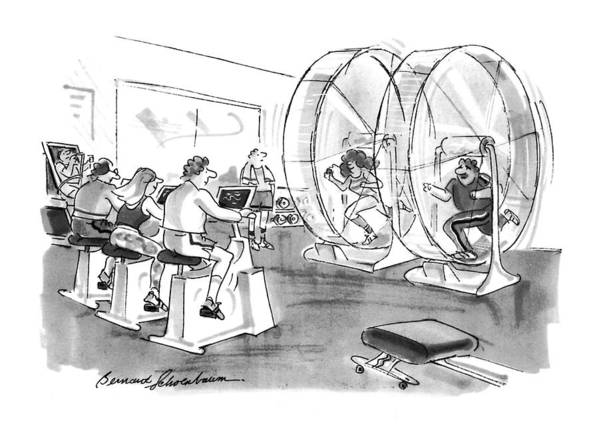 (people Exercising In A Hamster Wheel At The Gym.) Health Poster featuring the drawing New Yorker September 12th, 1994 by Bernard Schoenbaum