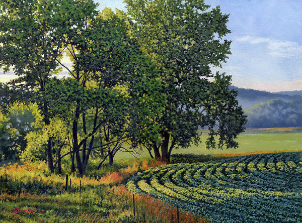 Oil Painting Poster featuring the painting First Light Late Summer Beans by Bruce Morrison
