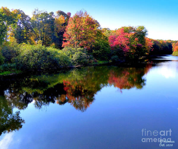 Landscape Poster featuring the photograph Fall Reflections by Rennae Christman