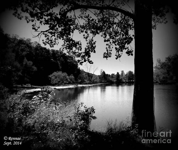 Waterscape Poster featuring the photograph The Calm by Rennae Christman