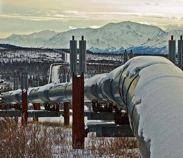 Alaska Poster featuring the photograph Alaskan Pipeline by Jim and Kim Shivers