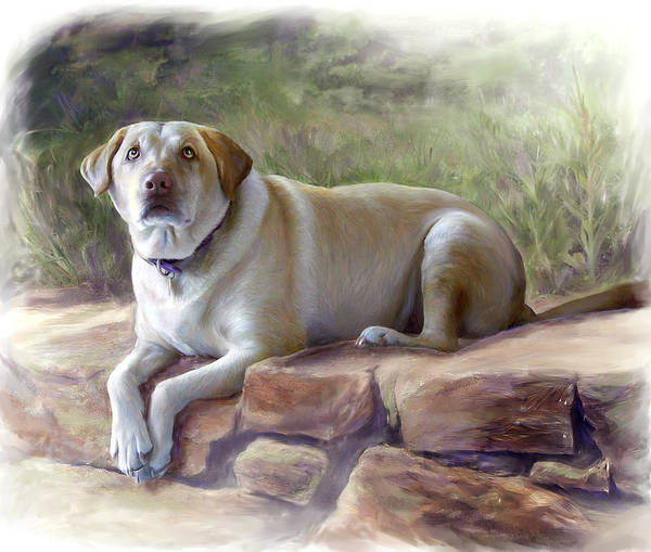 Dog Poster featuring the painting Restrained Energy- Yellow Labrador Retriever Portrait by Connie Moses